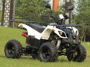 四輪バギー50ccATV前進1速バック付整備済車両 ナンバー登録簡単公道走行可ノーヘル 前後キャリア保安部品完備新車SB50BW
