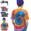 ステューシー STUSSY WT Swirl Tシャツ 半袖(stussy tee ティーシャツ T-SHIRTS トップス メンズ・男性用 1902999 スチューシー) ice filed icefield