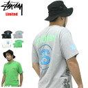 ステューシー STUSSY Multi Link Tシャツ 半袖 限定(stussy tee Limited ティーシャツ T-SHIRTS トップス メンズ・男性用 3902385 スチューシー) ice filed icefield