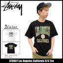 ステューシー STUSSY Tシャツ 半袖 メンズ Los Angeles California(stussy tee ティーシャツ T-SHIRTS カットソー トップス メンズ・男性用 1903855 ストゥーシー スチューシー) ice filed icefield