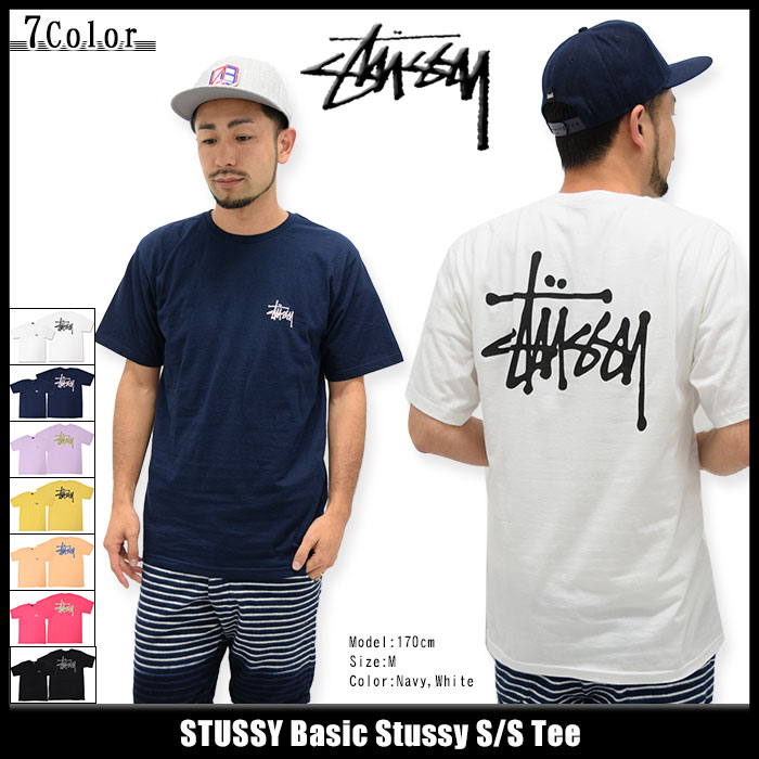 ステューシー STUSSY Tシャツ 半袖 メンズ Basic Stussy(stussy tee ティーシャツ T-SHIRTS カットソー トップス ベーシック メンズ・男性用 1903838 ストゥーシー スチューシー) ice filed icefield