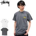 【6/26入荷予定】ステューシー STUSSY Tシャツ 半袖 メンズ Classic Roots Pigment Dyed Pocket(stussy tee ポケット ティーシャツ T-SHIRTS カットソー トップス メンズ 1944039 ストゥーシー スチューシー) ice filed icefield