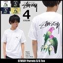 ステューシー STUSSY Tシャツ 半袖 メンズ Parrots(stussy tee ティーシャツ T-SHIRTS カットソー トップス メンズ・男性用 1904023 ストゥーシー スチューシー) ice filed icefield