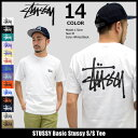 【6/26入荷予定】ステューシー STUSSY Tシャツ 半袖 メンズ Basic Stussy(stussy tee ティーシャツ T-SHIRTS カットソー トップス ベーシック メンズ・男性用 1904061 1904003 ストゥーシー スチューシー) ice filed icefield