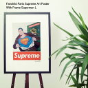フェアチャイルド パリ Fairchild Paris スーパーマン L ポスター シュプリーム アート ポスター ウィズ フレーム(Fairchild Paris Supreme Art Poster With Frame Superman L クラーク インテリア SUP10-18)[I便] ice filed icefield