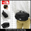 ザ ノースフェイス THE NORTH FACE ウエストバッグ スピナ(the north face Spina Waist Bag ヒップバッグ ウエスト・...