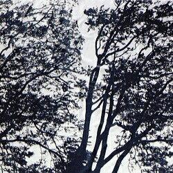 marimekko マリメッコ ファブリック 生地 Tuuli トゥーリ/風 リピート販売【ラッキーシール対応】