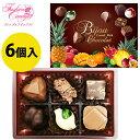 バレンタイン チョコ チョコレート ビジュショコラ 6個入り...