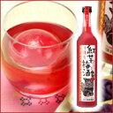 沖縄産紅芋梅酒500ml 12度 沖縄最古の蔵元新里酒造 沖縄 泡盛梅酒 通販