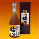 瑞泉酒造 黒糖入り梅酒500ml12度 泡盛仕込み梅酒 梅焼酎(うめじょうちゅう) 沖縄 泡盛梅酒 通販
