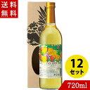 ワイン パイナップルワイン ラグリマデルソル 甘口 720ml×12 名護パイナップルワイナリー
