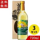 ワイン パイナップルワイン ラグリマデルソル 辛口 720ml×3 名護パイナップルワイナリー