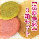 琉球白チョコin生クッキー ぽるかどっと20個入×3箱セ