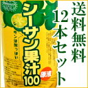 [free shipping] a person in a popular item is this! 12 undiluted solution sea sun fruit juice 100 free shipping セットシークァーサー [RCP] 10P23may13