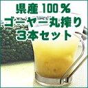 沖縄県産ゴーヤー100%ジュースゴーヤー原液500ml×3本セット 無添加の丸搾り!青汁系健康飲