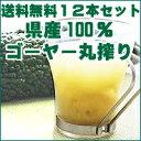 沖縄県産ゴーヤー100%ジュースゴーヤー原液500ml×12本