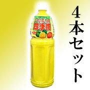 バヤリースシークヮーサー シークワーサー バヤリース
