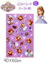 【ディズニー】小さなプリンセスソフィア 1〜2人用レジャーシートS(90×60cm)【Disneyzone】【雑貨】