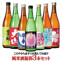 ウチ飲み純米酒福袋3本セット 720ml×3本 [包装込] ...