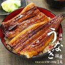 国産うなぎ長蒲焼き(160g〜170g)×1尾。訳あり品(国...