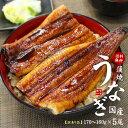 【送料無料】国産うなぎ長蒲焼き(160g〜170g)×5尾。...