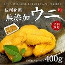 【送料無料】お刺身生うに400g(100g×4パック)「安心の無添加」とろける食感がたまらない!ウニ