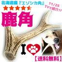 北海道産★特大★鹿の角?25cm【送料無料】犬のおもちゃ/犬のおやつ 大型犬?中型犬『エゾシカの角』