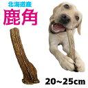 北海道産★鹿の角★20〜25cm大型犬〜
