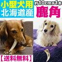 北海道産★小型犬用★鹿の角 約10cm以下×1本【送料無料】犬のおもちゃ/犬のおやつ 『エ