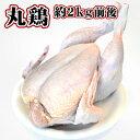 オヤマの鶏肉 冷蔵 丸鶏 約2KG前後 国産 からあげ とり肉 鶏肉 蒸しどり クリスマス 豪華 サラダ キャンプ ダッチオーブン アウトドア ガラ