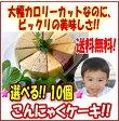 ☆選べる!!☆こんにゃくケーキ10個【送料無料・クール便】