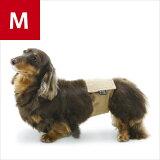 【ICONS】/犬 マナーベルト/マナーバンド/ドッグウェア/犬服/犬 服/ベルト/バンド/アルファアイコン/ALPHAICON/機能的/ペットウェア【MBMP【中型犬/M】】【P25Jan15】