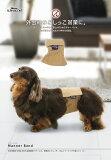 【限定カラー登場】ALPHAICON 直営店 【中型犬/L】マナーバンド ALPHAICON BASIC 【ランクイン】【マナーベルト】【メール便対応可能】【MBMP】==