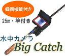 Bigcatch-thum3
