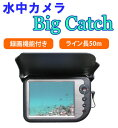 Bigcatch50m-thum