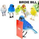 BIRDIE BILL ブルーバード バーディビル インテリア雑貨 小鳥 マグネット 青い鳥 鳥置物 鳥オブジェ セキセイインコ カナリア ボタンインコ インコ あす楽