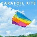 パラフォイル カイト 凧 凧揚げ タコ スポーツカイト PARAFOIL KITE カラフルカイト