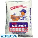 【あす楽対応】CU92521 インスタントセメント 灰 10kg
