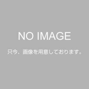 AL00763 アサヒペン EXアイロン貼りふす...の商品画像