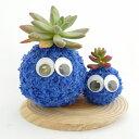 インテリアにいかがですか?癒し系の苔玉エコアニマルツリー癒し系 苔玉 モスビー君(ブルー) ダブル