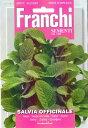【人気商品】セージSALVIA OFFICINALE(ハーブ26)[ハーブ 種子 種 家庭菜園] 【HLS_DU】10P03Sep16