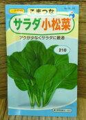 【人気商品】サラダ小松菜(種:ウタネ)[小松菜 種子 家庭菜園 種]