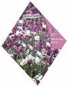 【人気商品】パステルフラワーガーデンMIX(No.398)[ガーデニング ミックス 種 園芸 種子] 【HLS_DU】10P03Sep16