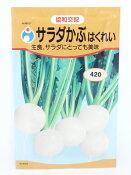 【人気商品】サラダかぶ(はくれい)(かぶ)(種:ウタネ)[カブ 種 種子 家庭菜園 蕪]