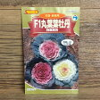 F1丸葉葉牡丹 特選混合(種)[家庭菜園 種 葉牡丹 ガーデニング]