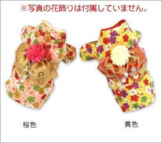 iDog IDOG hannari not about plum blossom kimono * photo Garland. M flight 2 / 3
