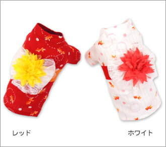 Goldfish yukata XXL F size of the iDog eye dog race zone