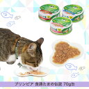 Catfdpu020_main