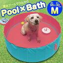 【ペット クール iDog】夏は愛犬とひんやり気持ちいいプールで遊ぼう! シャンプー時のお風呂としても使用できます!