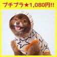 【犬服】 iDog アイドッグ ボーダーフードのスターパーカー【あす楽対応 翌日配送】 【犬の服 アイドッグ 国産 ドッグウェア ペットウェア】【犬 服 猫服】【i dog】【春物】【夏物】